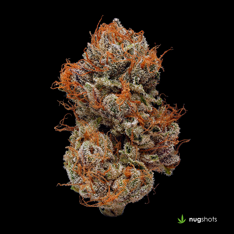 Jesus OG Cannabis Strain