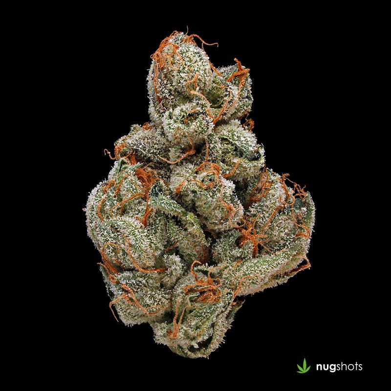 Sour LA Cannabis Strain