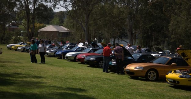Cars on display for Concours & Bits 'n' Bling at the 2013 President's Picnic