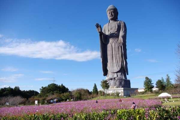 Ushiku Daibutsu (120 meters)