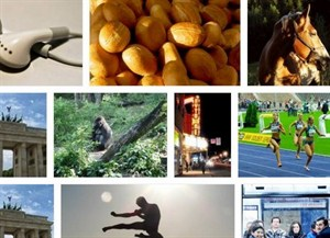 flexImages : Lightweight & Flexible Gallery Plugin with jQuery