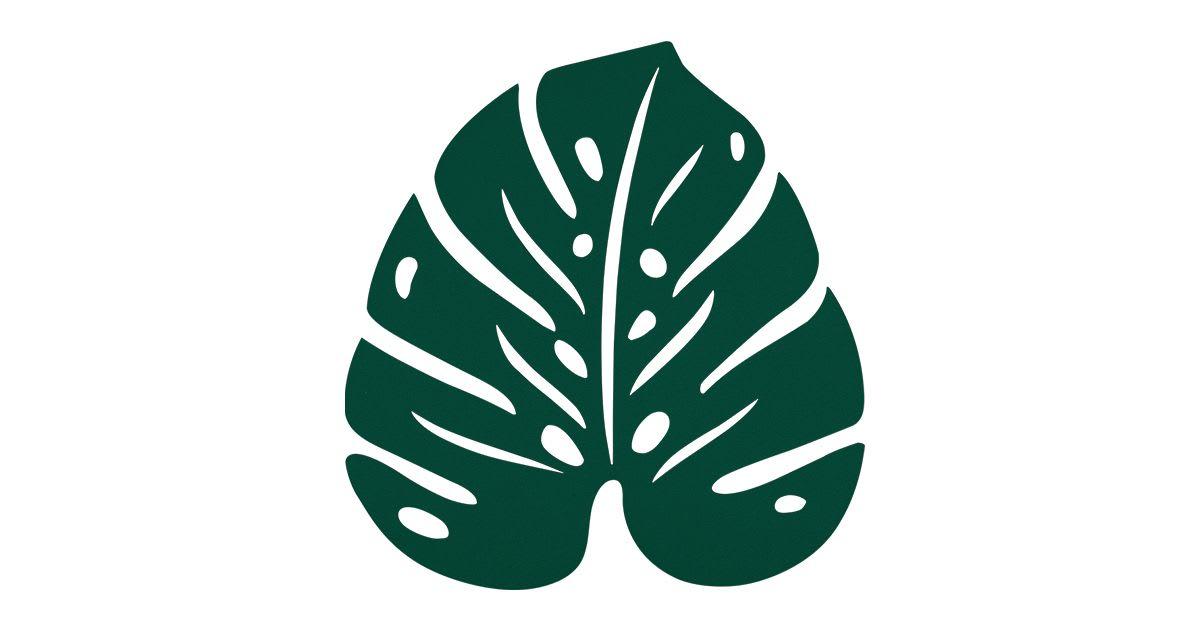 Dessous de plat Monstera vert cèdre