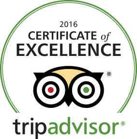Trip Adisor Excellence Award: