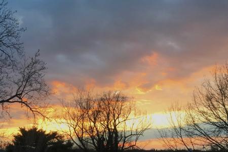 Lexington Sunsets