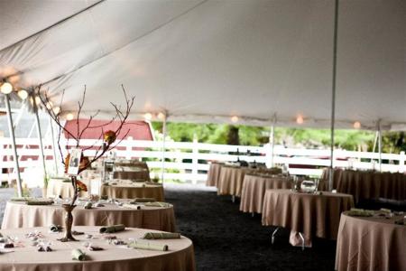 Weddings & Events I