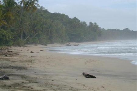 People and Animals of Puerto Viejo