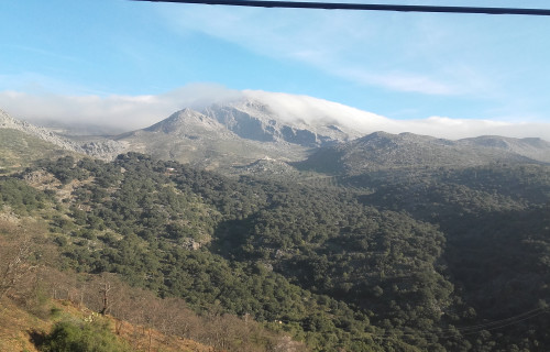 Cartajima's Table Mountain