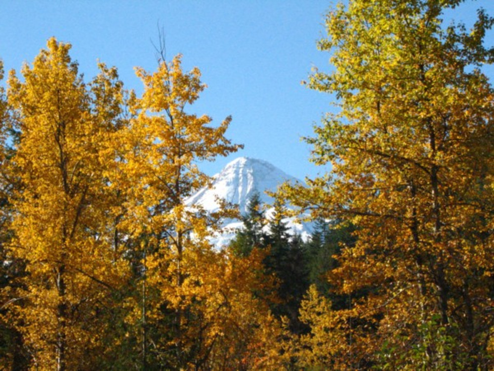 Rooms still available for October's Harvest Fest in the Hood River Valley
