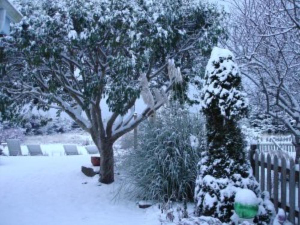 Winter Wonderland Enough Already!