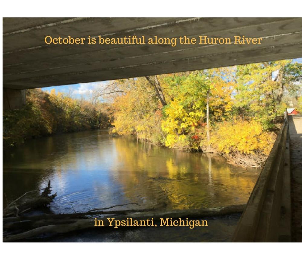 Fall Leaf Color in Ann Arbor-Ypsilanti