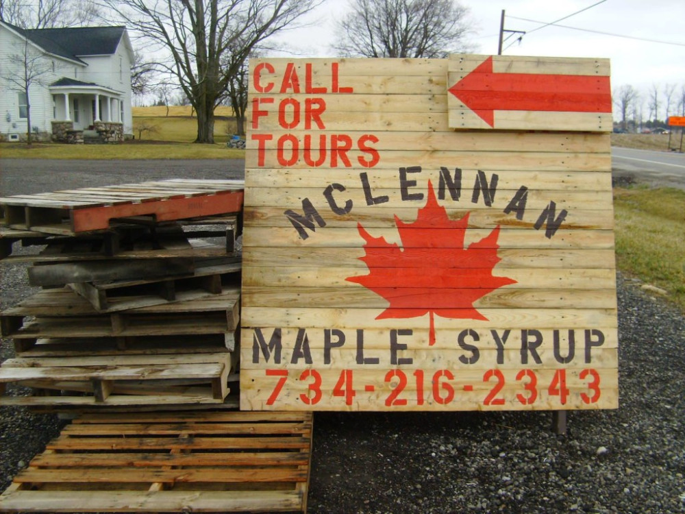 Maple Syrup in Michigan