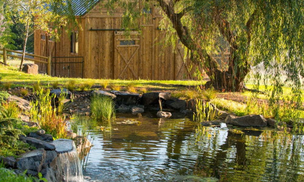 New Duck Pond and Barn at Country  Willows Inn!