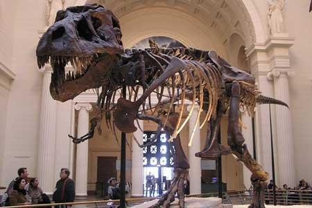 Di Kutub Utara Ternyata Pernah Hidup T-Rex Mini