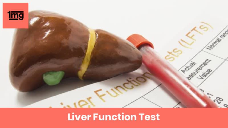 Liver Function Test In New Delhi From Srl Limited View Price