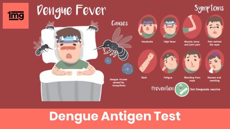 Dengue Antigen
