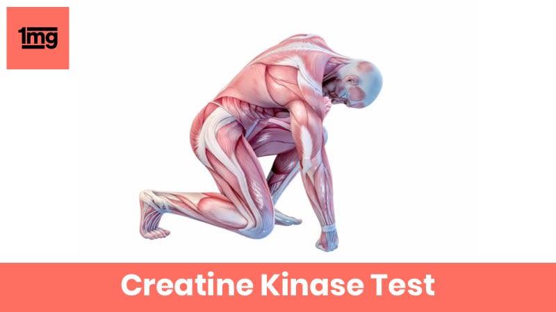 Creatine Kinase