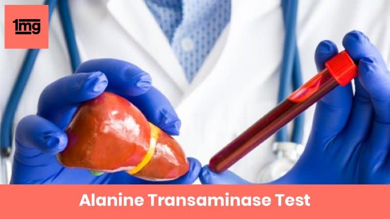 Alanine Transaminase
