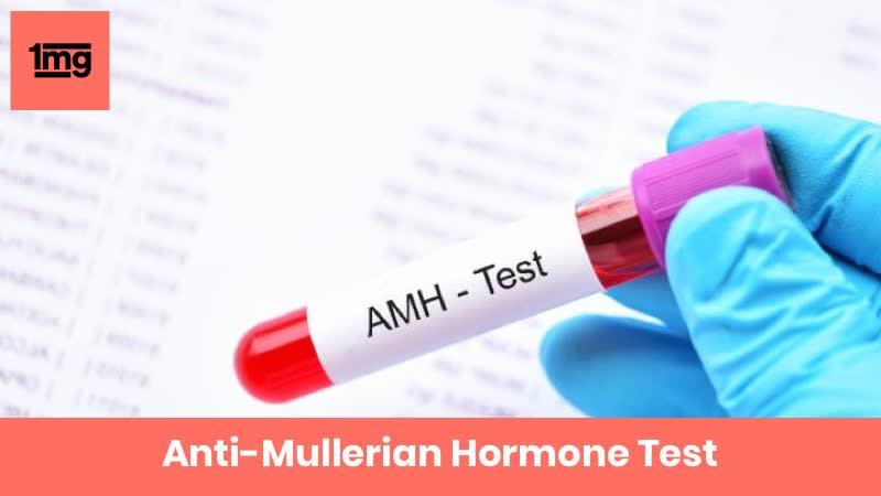Anti-Mullerian Hormone