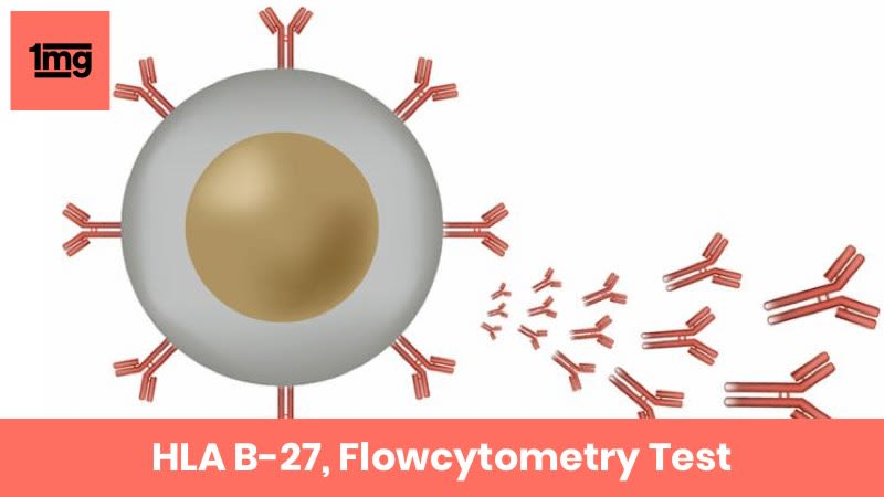 HLA B-27, Flowcytometry