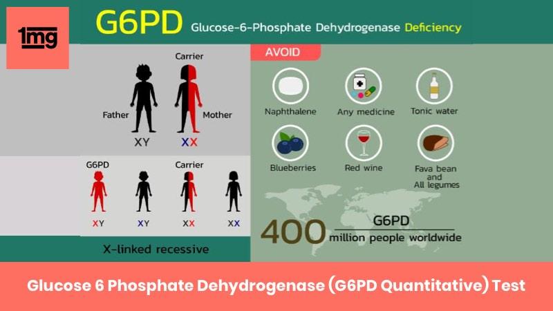 Glucose 6 Phosphate Dehydrogenase (G6PD Quantitative)