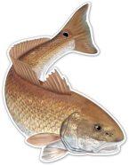 Salty Bones Action Fish Decal