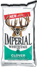 Imperial Whitetail Clover 18#