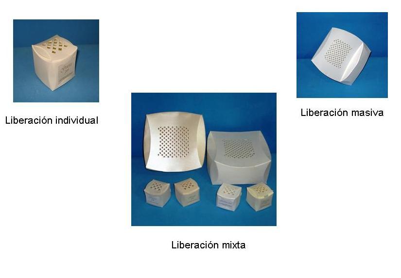 tipos de cajas para la liberacion de mariposas df