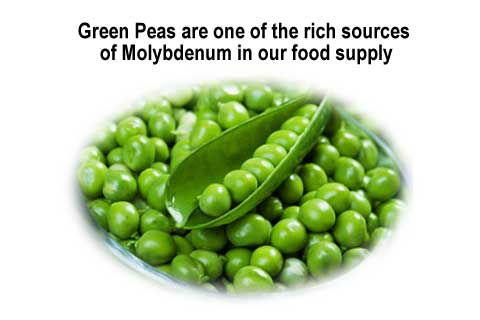 Green peas are a source of molybdenum