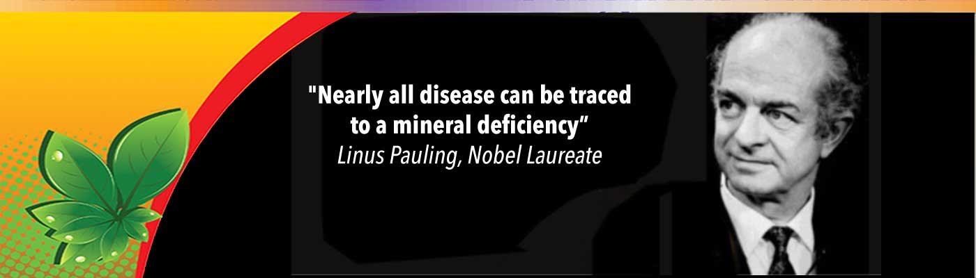 Organic Sulfur For Health