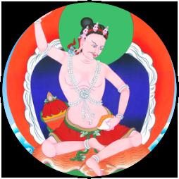 Shrisingha t91vpy