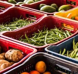 Alimentação adequada e saudável