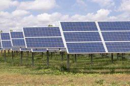 NY-Sun Solarize