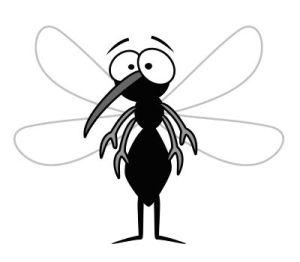 Antimosquito mosquito