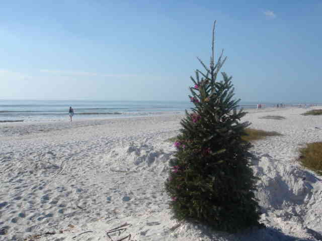 Christmas Day on Sanibel Island
