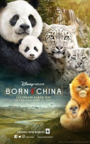 Cuộc Sống Hoang Dã ở Trung Quốc