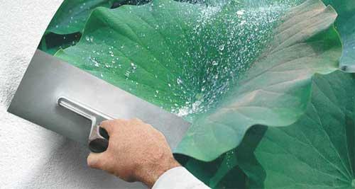 Tinta da Sto Brasil protege as superfícies da ação do tempo