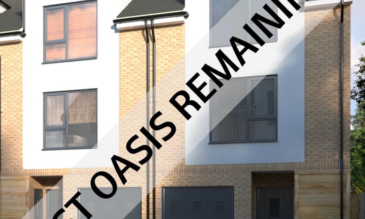 Last Oasis Remaining