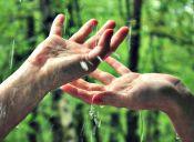 Cómo lavar la loza sin maltratar tus manos