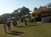 25.000 personas asistieron a Bierfest Santiago 2015