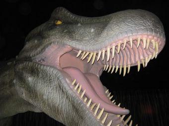 De regreso a la Prehistoria con Dinosaurios Animatronix