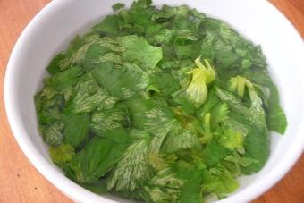 Como Cocinar El Apio | Pepara Una Tortilla De Zanahoria Y Hojas De Apio Cookcina