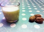 Cómo preparar una leche vegetal de nueces