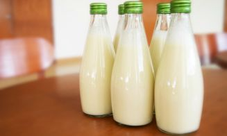 Cómo preparar leche de alpiste en casa