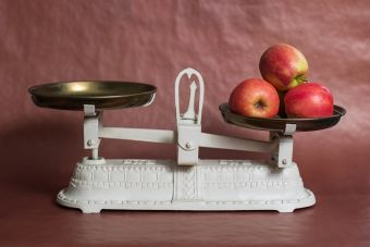 Un aliado para cocinar: Las Balanzas o Pesas de cocina