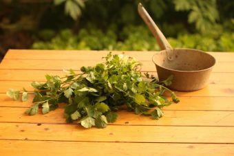 Cómo preparar mole verde con pollo