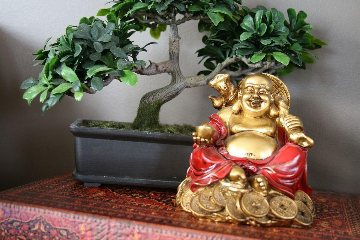 8 tips del feng shui para atraer dinero fucsia - Como atraer el dinero feng shui ...