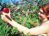 Alimentación y belleza: eres lo que comes, no sólo lo que te pones