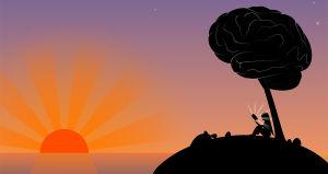 ¿Cómo tener inteligencia emocional?