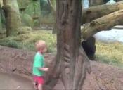 [Video] Un niño disfruta jugando con un pequeño gorila en un zoológico