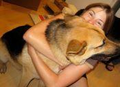 ¿Quieres saber si tu perro te quiere? es fácil
